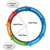 Joomla-dev Cycle